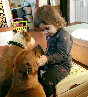 STAFFORDSHIRE BULL TERRIER E BAMBINI , STAFFY PROJECT STAFF KENNEL