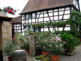 Irgendwo an der Deutschen Weinstraße