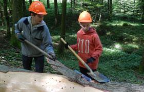 Schüler bei der Arbeit im Wald