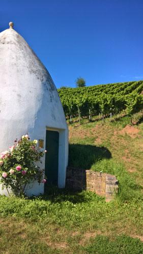 Trullo im Uffhofener La Roche mit blühenden Rosen