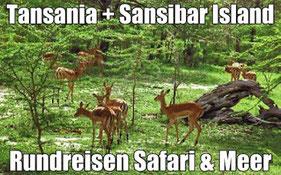 Tansania Safari und Baden Kenia Sansibar mit Flug günstig bei Reiselotsen buchen