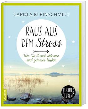 Raus aus dem Stress! - Leichter leben Wie Sie Druck abbauen und gelassen bleiben von Carola Kleinschmidt