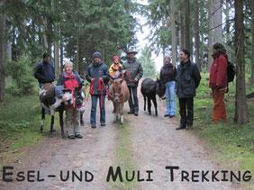 Esel- und Muli- Trekking