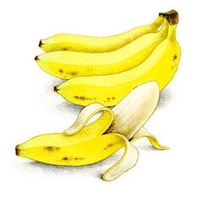 これは前回のバナナ。