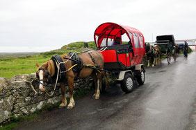 Pferdekutschen für die Touristen