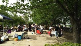 小松川千本桜公園
