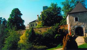 12.06.91_Burg Kreuzen
