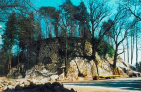 14.04.03_von Sträuchern gesäuberter Fels und Burgmauer_1