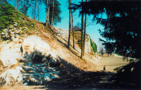 14.04.03_von Sträuchern gesäuberter Fels und Burgmauer_2