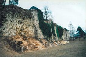 14.04.03_Säuberung Burgmauer und Park