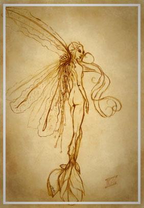 Lichtelfe, Elfe Timber, lebt auf Schalaienlichtung im Endzeitlosen, Koboltfeuer, Koboldfeuer, Fee, Fantasy