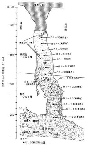 図6 砂脈内でのサンプルの位置(中村ほか,1998)