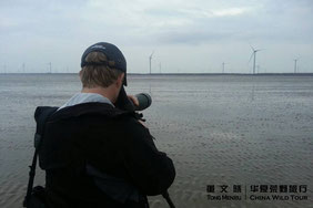 水鸟时间 董文晓/华夏荒野旅行