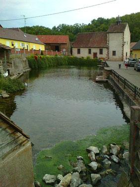 Teich mit heilkräftigem Wasser