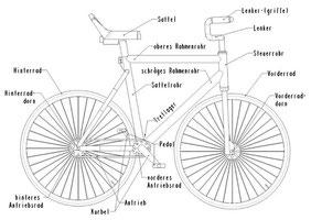 Das Kunstrad ( Quelle:UCI)