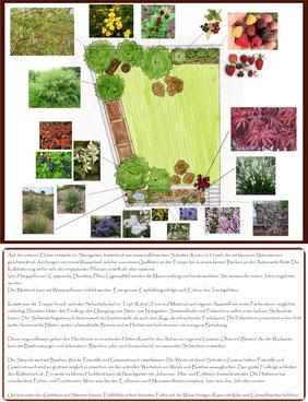 Beispiel für schlichte Struktur-Planung in einem eher konventionellen Garten mit Wunsch nach natürlichen Elementen