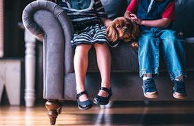 Un cavalier king charles marron assis entre deux enfants par coach canin 16 éducateur canin en charente