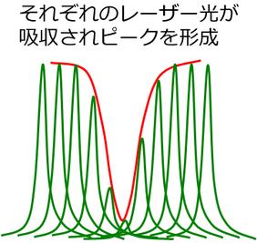 それぞれのレーザー光が吸収されピークを形成します