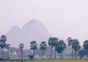 せーナーニ村の風景
