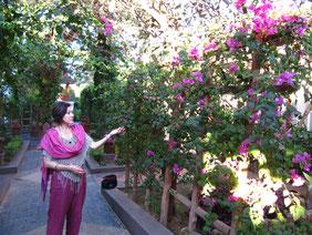 Silke Vetter in Myanmar