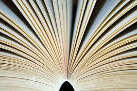 Bild: offenes Buch, Seiten aufschlagen, vielseitiges Angebot, Schriftsteller