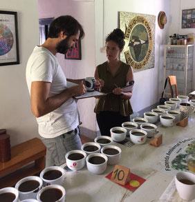 Direkthandel Spezialitätenkaffee Cupping Alimado