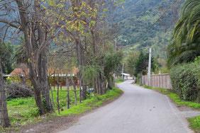 Calle Las Nieves 2016