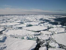 Capa de hielo en el océano Ártico./ © Carlos Duarte
