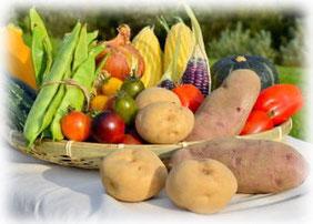 ワールドグリーンの肥料で美味しい野菜を育てましょう!