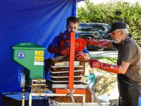An der Apfelpresse wird aus den Äpfeln Saft gewonnen. - Foto: Kathy Büscher