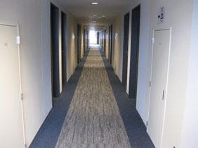 ビジネスホテルの廊下