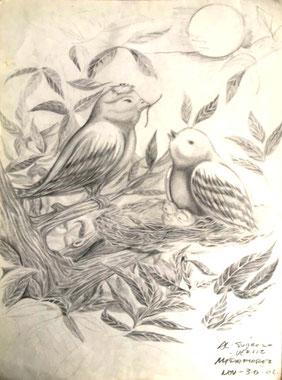 Álvaro Suárez Vértiz, pintura contemporánea, Perú, pintores peruanos, arte, dibujo, birds