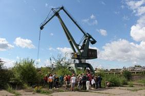 Knapp 30 Teilnehmer und ein Verladekran beugen sich gespannt über die botanischen Kostbarkeiten auf dem Gelände des Deutzer Hafens.    Bild: Ivo Bathke