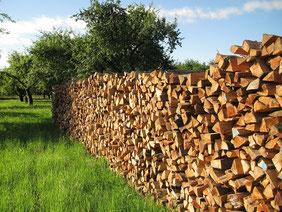 Venta de energía con biomasa