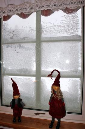 """""""Blick"""" aus unserem Küchenfenster"""