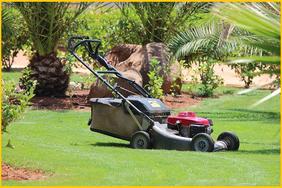 Da durch das Mähen Schnittgrün und somit Nährstoffe entfernt wurden, muss der Rasen regelmäßig gedüngt werden, um zu verhindern, dass er an einem Nährstoffmangel leidet.