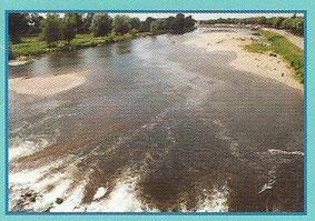 """La Loire, fleuve """"sauvage"""" de France"""