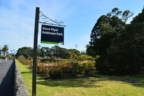 - Dove Myer Robinson Park - Parnell -Nouvelle- Zélande -