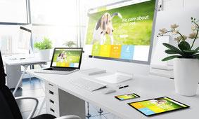 COM IT-Solutions Website & Druck