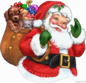 Babbo Natale con cucciolo nel sacco dei regali