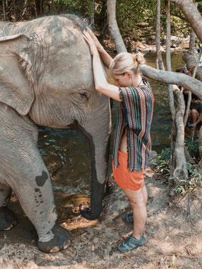 Frau streichelt Elefanten