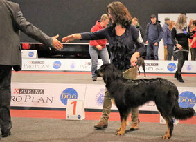 first showresult 9m youthwinner and BOS (Brx)