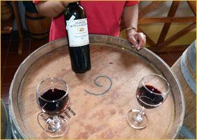 Cave à vins de qualité à monter en kits