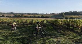 Mountain bike horse riding Hiking trail vineyard Moncaup Monpezat (Vic-Bilh/Madiran)