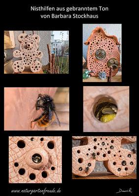 Nisthilfe insect nisting aid Insektenhotel insect hotel Gehörnte Mauerbiene Osmia cornuta  hornfaced bee mason bee gebrannter Ton terrra cotta Barbara Stockhaus