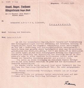 Erweiterte Flächennutzung zum Sammeln der Bärwurz-Wurzeln - Juli 1951