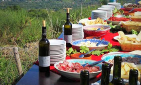 Private Tour of Mt.Etna + Lunch at Etna Winery