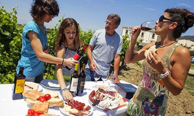 Private Tour of Three Top Etna Wineries