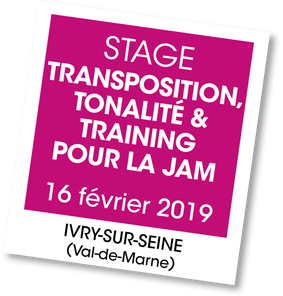 Stage Ireal Pro et Transcribe