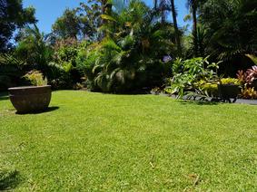 Clip n Clean Lawn Mowing
